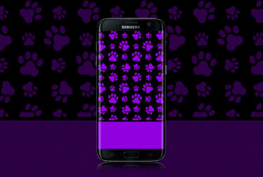 Hot-Purple-Paws-wallpaper