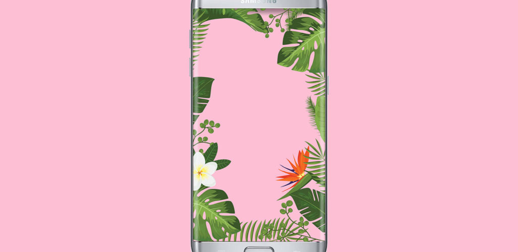 tropical flowers pink wallpaper